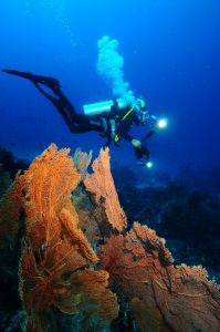 Aceh International Diving Festival and Championship Will be Held in Sabang